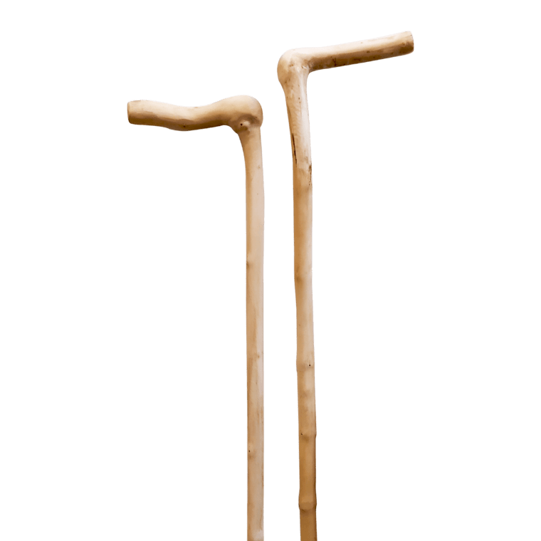 Stick made of natural skull wood